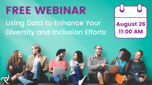 Data Diversity and Inclusion Efforts