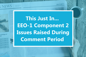 This Just In... EEO-1 Component 2 Issues Raised During Comment Period