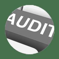 aa_circle_audit_16.png
