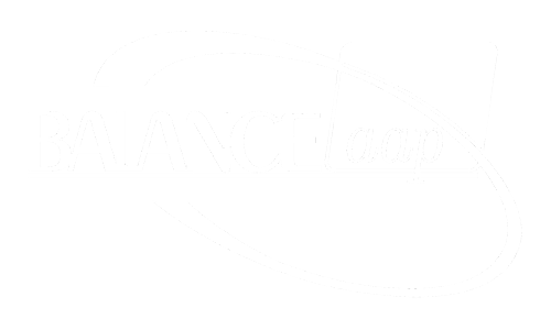 BALANCEaap affirmative action software