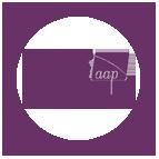 BALANCEaap affirmative action software